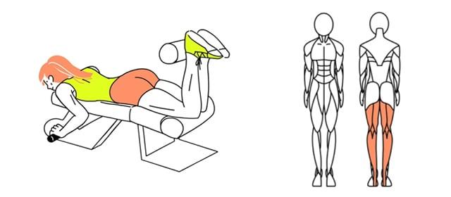 レッグカールでお尻と太ももの境目を作る。
